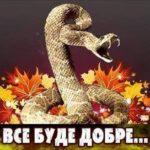 Дзвінка Торохтушко про файномістянський скандал за участю дівчат