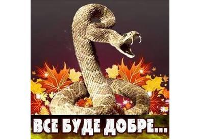 Дзвінка Торохтушко, Любов Бурак