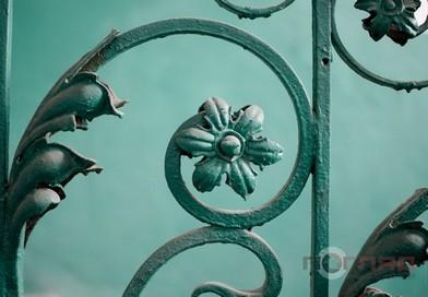 <strong>Де у Тернополі цілорічно цвіте й пахне (фото)</strong>