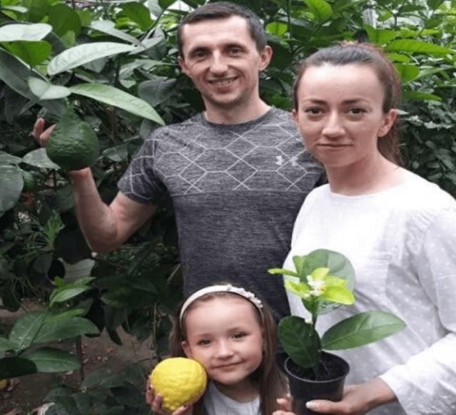 Майже тисяча екзотичних саджанців. Родина з Тернопільщини вирощує унікальні для нашого клімату фруктові дерева