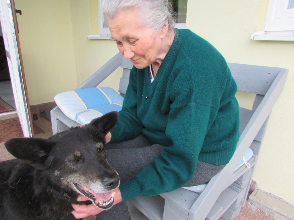 На Тернопільщині собака побіг за господинею, яку забрали у лікарню